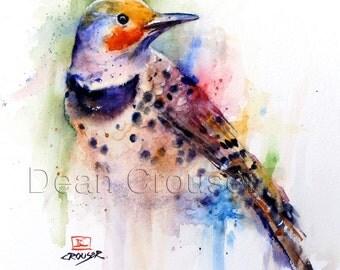 FLICKER Watercolor Bird Print, Woodpecker Art by Dean Crouser