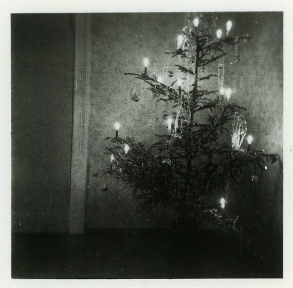 Vintage Photo Little Christmas Tree Photography By Dandrphotos