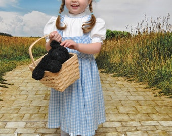 Dorothy Dress - Sizes 2T, 3T, 4T, 5, 6, 7, 8 and 10