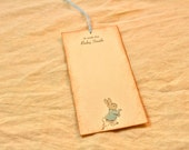 Baby Shower Wish Tags - Set of 10 - Peter Rabbit - Baby Boy Blue - Vintage Baby Shower - Wish Tree - Wishes For Baby - Personalized