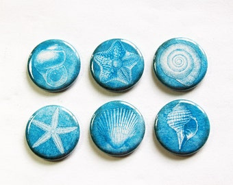 Seashell Magnets, Nature Magnets, Blue, button magnets, Kitchen Magnets, Fridge Magnets, beach decor, beach wedding favor, magnet set (3274)