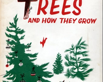 Christmas Trees and How They Grow by Glenn O. Blough, illustrated by Jeanne Bendick