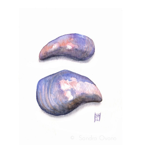 Original watercolor study of Mussel shells - Pink and lavender original painting - 3,5 x 5 inches