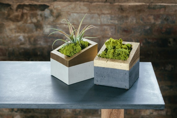 Items similar to concrete and gold angl planter on etsy for Small concrete projects