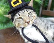 Picture Of Grey Cat Wearing Pilgrim Hat