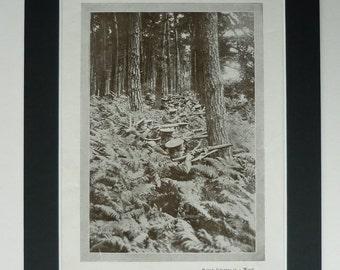 1919 Vintage Print Of British Infantry - First World War Soldiers - WWI Print - Vintage Military Print - British Army - Battle - Woodland