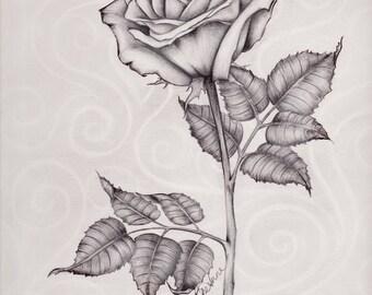 Original Design Rose Drawing Print