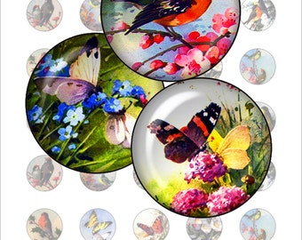 Butterflies and Birds Digital Collage Sheet -1 inch round images for bottle caps, pendants, magnets, buttons