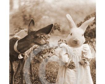 Rabbit Digital Download, Easter Rabbit, Deer, Digital Anthropomorphic, ACEO, Digital Collage, Large Images, Transfer Images, Bunny,Vintage