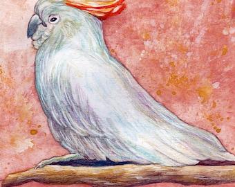 Parrot. Original Aquarell, Painting, Watercolor, Handpainted, 7,6 x11,6 inch. NOT a print. Tatiana-Art