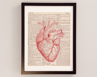 Vintage Heart Print Red - Anatomy Art - Print on Vintage Dictionary Paper - Doctor Gift - Medical School