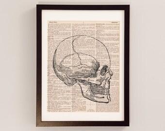 Skull Dictionary Print - Anatomy Art - Print on Vintage Dictionary Paper - Doctor Gift - Medical School - Right Facing Skull