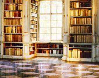 Mansion Library Photography Backdrop