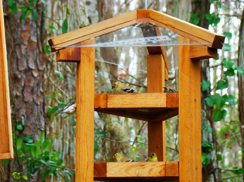 Large Bird Feeders Fly Through Style Cedar Wood Bird Feeders