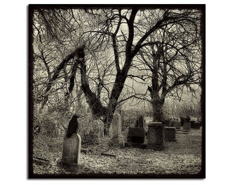 Crow Art Print, 8X8 Inches, Gothic Raven, Brambles, Blackbird, Graveyard, Twisted Trees, Nature - Lonely Graveyard Crow