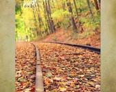 Train Track Photography, Train Tracks, Autumn, Autumn Colors, Autumn Decor, Photography, Art, Landscape, Valley Railroad, Connecticut,Hadda