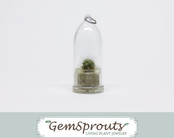 HOLIDAY SALE: GemSprouts Living Plant Necklace - Silver Ball Cactus Necklace with Ballchain