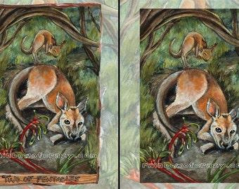 Baby Kangaroo Print, Wildlife Decor, Two of Pentacles Tarot Card, 8x10 Wall Art, Kangaroo Paw Flower, Green and Tan, Animism Tarot Deck
