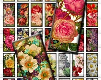 Vintage Flowers Antique Roses Floral Digital Images Collage Sheet 1x2 inch Rectangles Domino Commercial INSTANT Download RD05