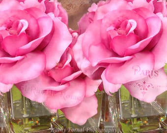Pink Roses Photography, Paris Photography, Dreamy Roses Wall Art Decor, Shabby Chic Cottage Pink Roses, Romantic Paris Roses Photography