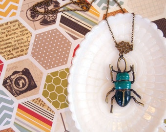 turquoise enamel beetle necklace- long aged brass- natural history- insect jewelry