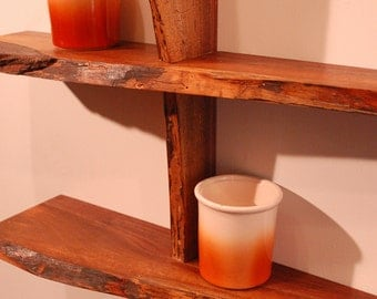 Three Level Walnut Live Edge Shelf