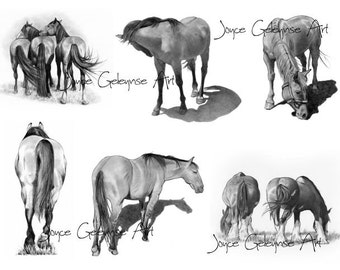 Horse Drawing: Printable Collage Art, Horses in Pencil, Equine, Equestrian, Art, Realistic Drawings of Horses, WHOA Team, INSTANT DOWNLOAD