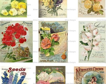 Vintage Seed Packet Digital Download Backs Seed Package Garden Gardening Mixed Media Scrapbooking Card Making Altered Art Print