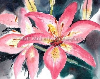 Blushing Lilies Fine Art Print from original watercolor