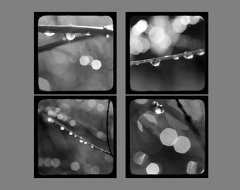 Four Abstract Photographs Set, Modern Wall Decor, Black and White Photography, Water Drops, Rain Photograph