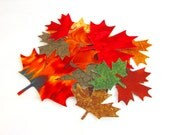 Diecut MAPLE LEAVES, DIY,  Leaf Appliques, cotton, assorted, Iron on, Fused 100% premium cotton fabric, 16 gorgeous Maple leaves