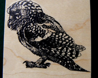 owl rubber stamp P20