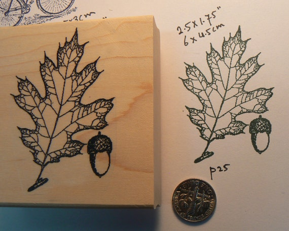 Acorn with leaf rubber stamp WM p25