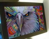 Greeting card print of original art- colorful eagle bird Zentangle