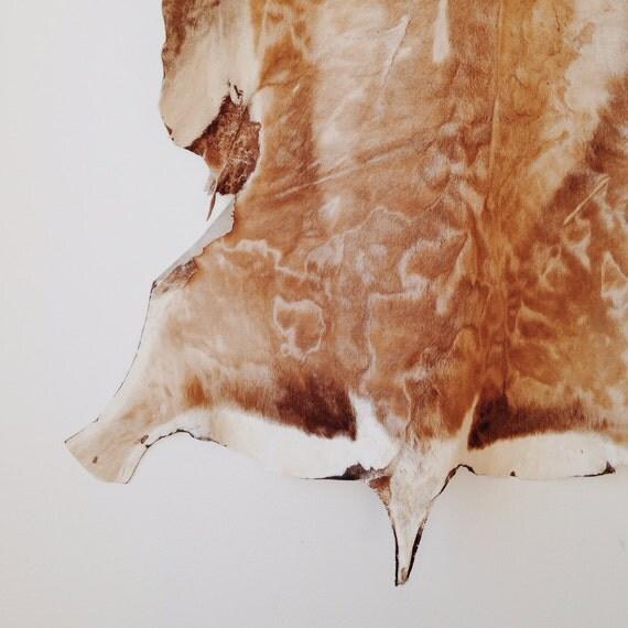 Vintage Hide Rug Area Rug Animal Skin By Ethanollie On Etsy