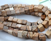 Picasso Jasper 8mm Cube Beads   20
