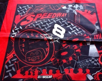 Cotton Fabric, Nascar Pillow Panel, #8 Speedway, 16 inch pillow panel, Race Car