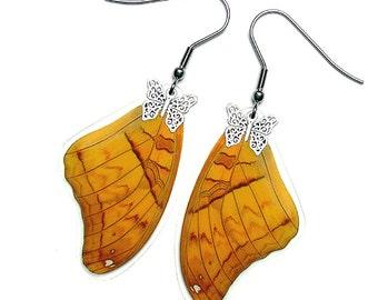 Real Butterfly Wing Earrings (Vindula Forewing - E044)