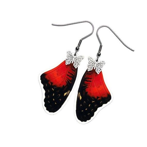 Real Butterfly Wing Earrings (Biblis Forewing - E210)