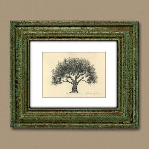 Olive Tree Drawing Pen and Ink Fine Art Print on Natural Paper