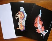 Nudibranch Cards
