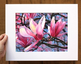 Pink Magnolia Art Watercolor painting print by Cathy Hillegas, 8x10, mat 11x14, floral watercolor print, magnolia art, pink red white blue