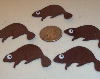 Beavers - 5 to a set