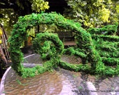 Green Moss Garland Vine by the foot-Baskets-Wreaths-Preserved Moss rope