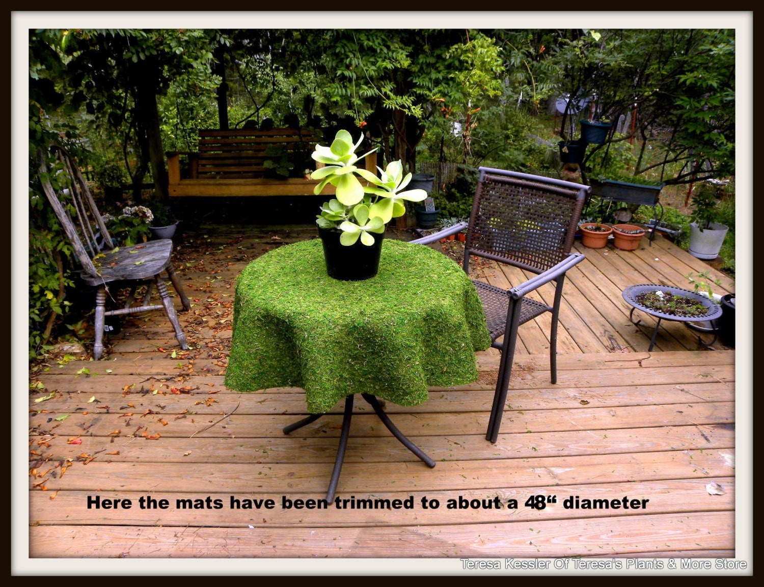 Moss Mats Round Moss Table Cloth Will Fit From 27 42 Moss Mats Preserved