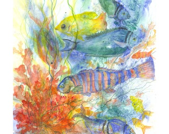 Fine Art Giclee Print For Framing, Fish & Sea Life Swimming in the Sea and Shallow Coastal Waters By Living Coral Reefs by  Janet Dosenberry