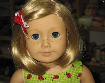 Ladybug Toddler and 18 inch Doll Dress and Dishes