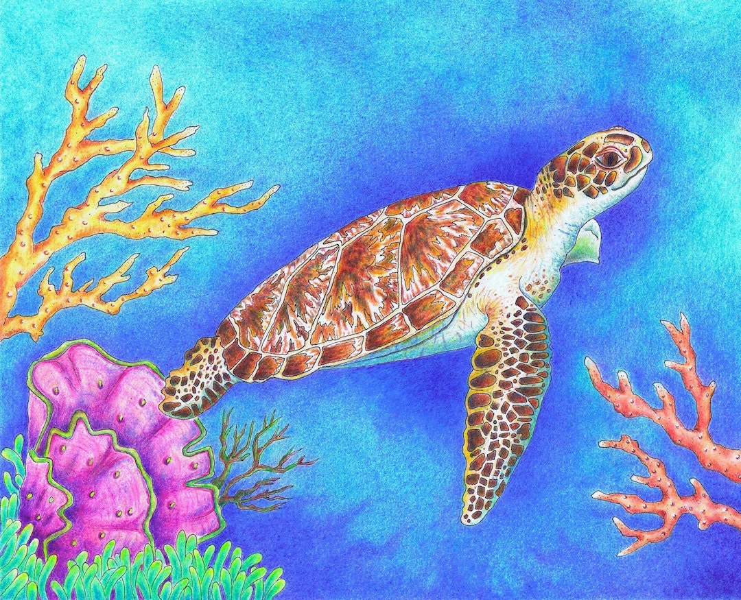 Ocean Color Pencil Drawing Coloring Coloring Pages