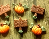 "Edible Fondant ""Pumpkin Patch"" Set- Cake/Cupcake Toppers-Set of 12"