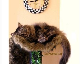 CAT TREE FURNITURE 4' High Steamboat, Cat Lover Gift, Modern Cat Tree, Custom Cat Tree, Luxury Cat Bed, Fancy Cat Tree, Steamboat 4F1C1L